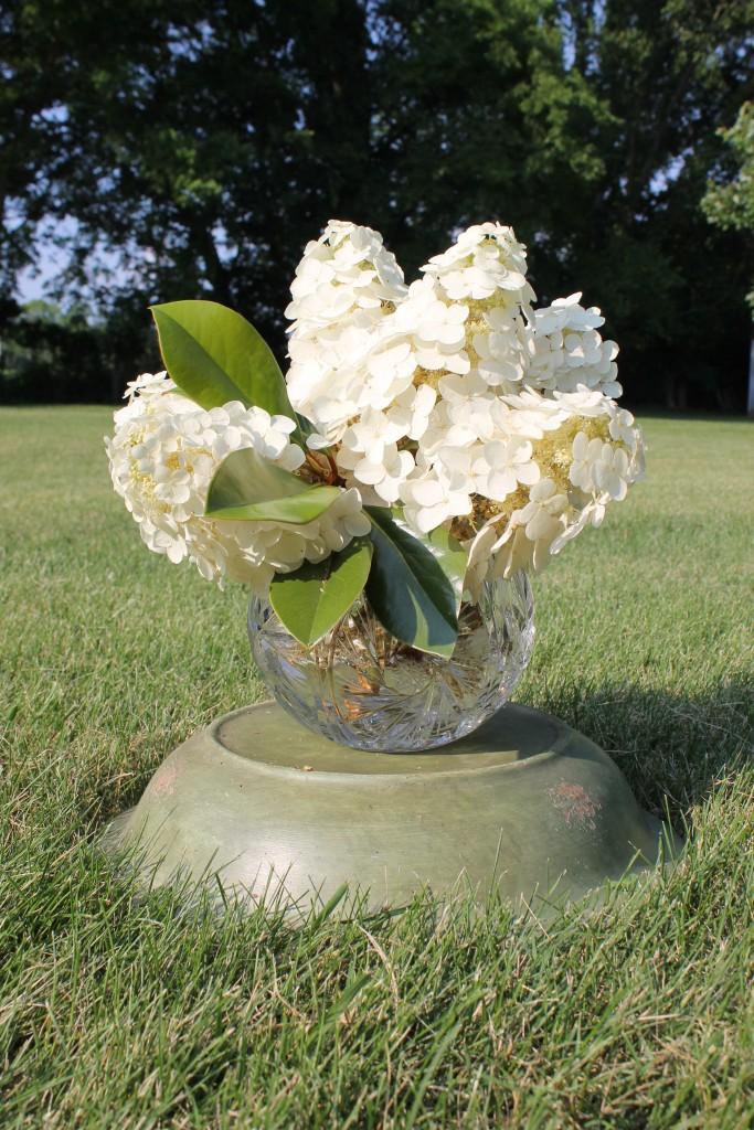Max grad WLM flowers 063